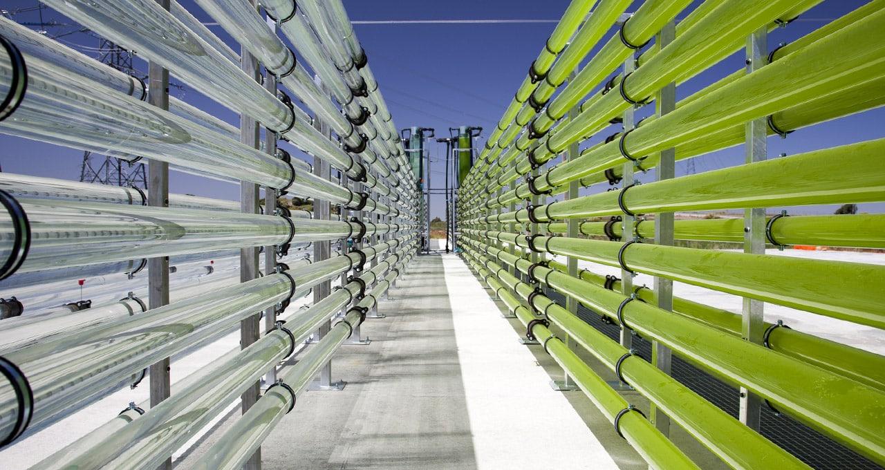 El CO2 al servicio del rendimiento industrial