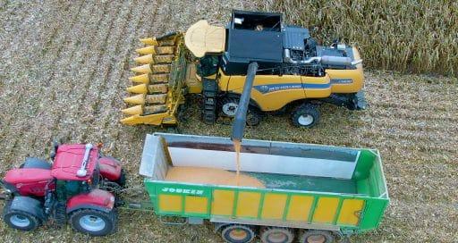 IoT und KI sorgen für Präzision in der Landwirtschaft